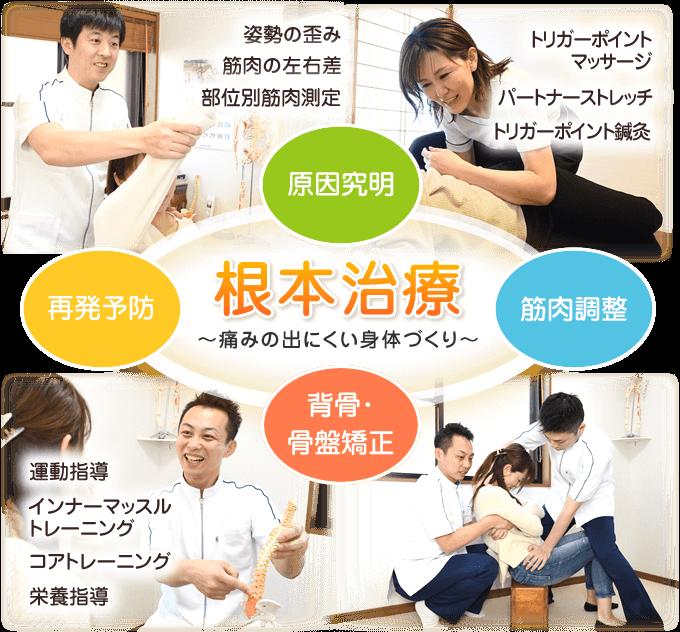 原因究明→筋肉調整→背骨・骨盤矯正→再発予防